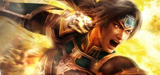 dynastywarriors8