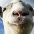 Goat Simulator (XB1) Review