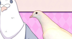 Hatoful Boyfriend: Holiday Star (PC) Review